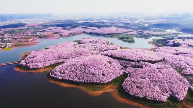 Bloesemende bomen en gewassen kleuren Chinees landschap