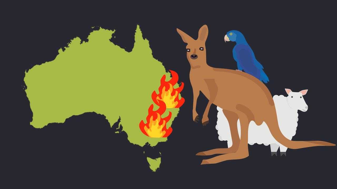 Waarom zijn de bosbranden dit jaar zo heftig in Australië?