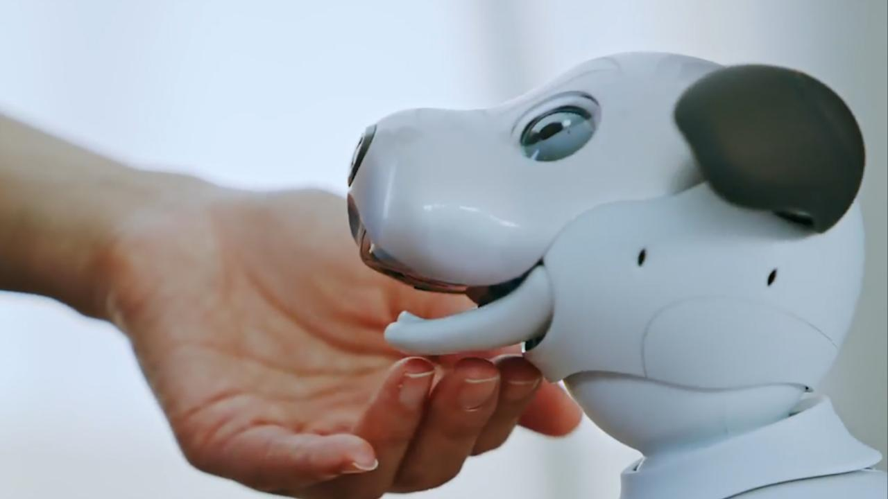 Sony's robothond Aibo is terug