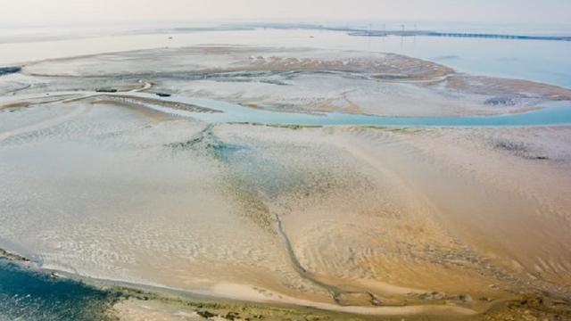 Rijkswaterstaat begint 1 oktober met opspuiten van Roggenplaat