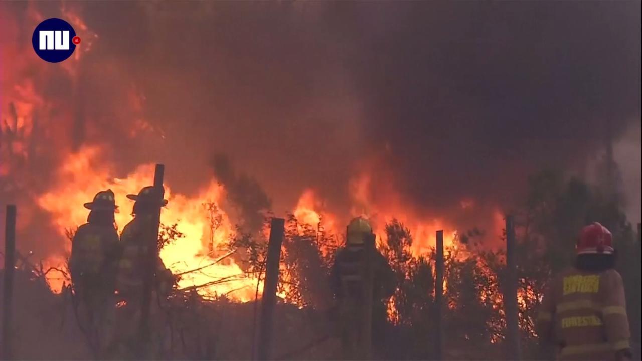 Chili kampt met hevigste bosbranden in vijftig jaar