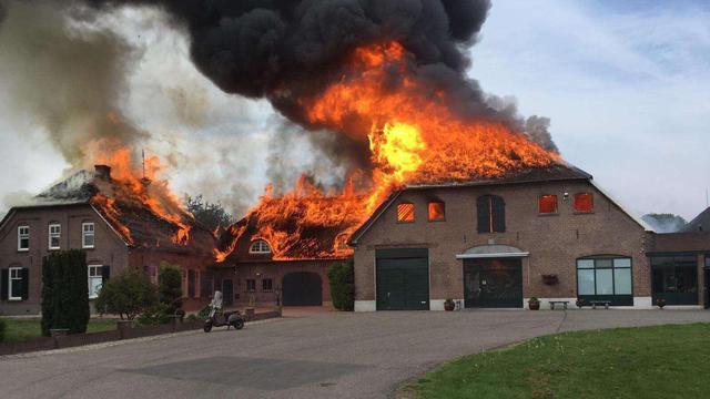 'Twee honden omgekomen bij zeer grote brand in Gelders dorp Herveld'