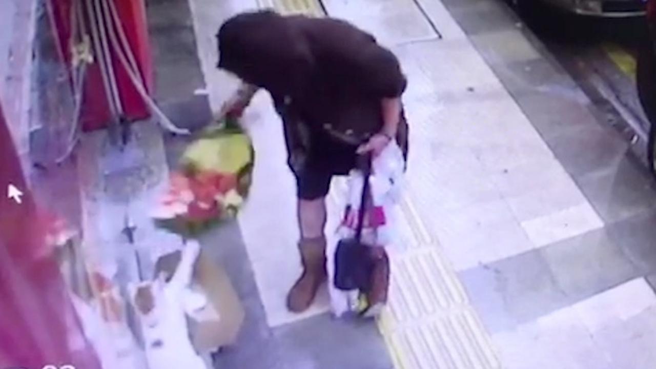 Vrouw steelt deken van straatkat in Turkije