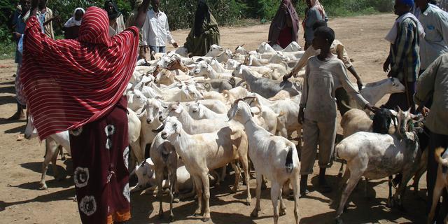 'Somalische droneslachtoffers klagen Nederlandse staat aan'