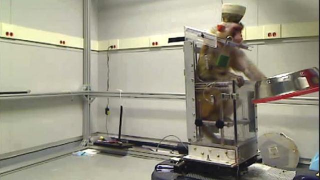 Wetenschappers laten aap rolstoel besturen met gedachten