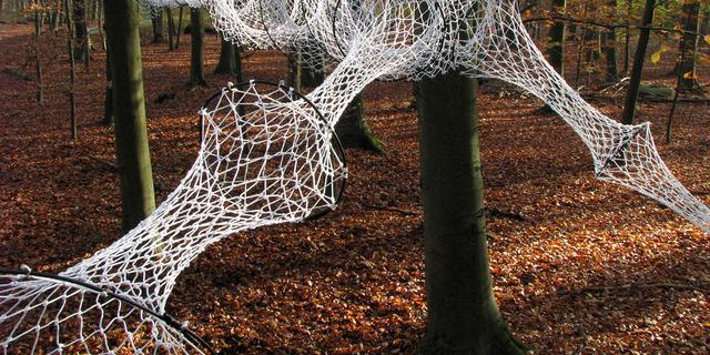 Museum in het bos: Kunstroutes voor in de herfst