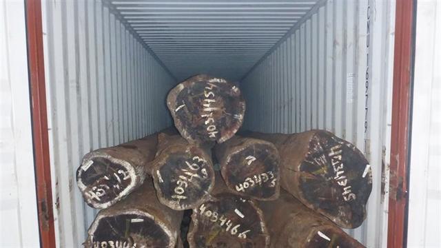 Douane vindt 1.500 kilo cocaïne in container in Rotterdamse haven
