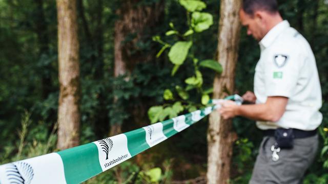 'Boswachters zien nadelig effect van toegenomen recreatiedruk op natuur'
