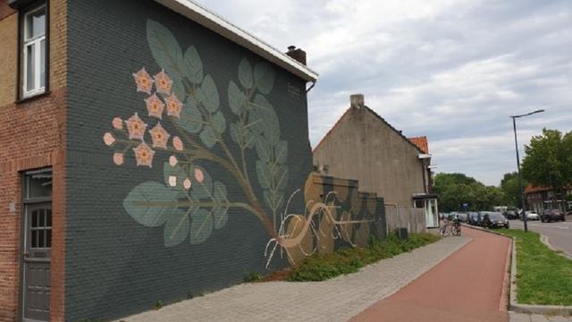 Muur Bredase Vincent van Goghstraat beschilderd met aardappelplant
