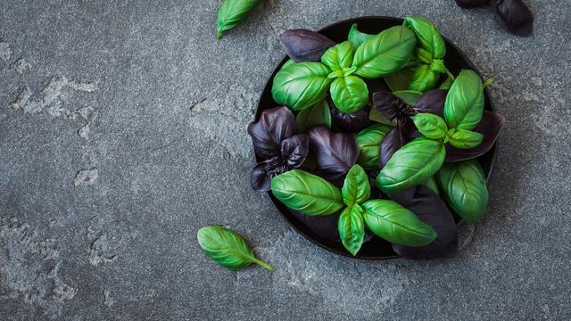 Kruidenplanten in de keuken: zo hou je ze wél in leven