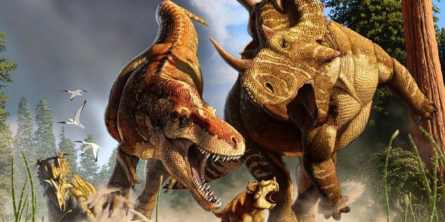 Tyrannosaurus Rex was een duurloper, geen sprinter