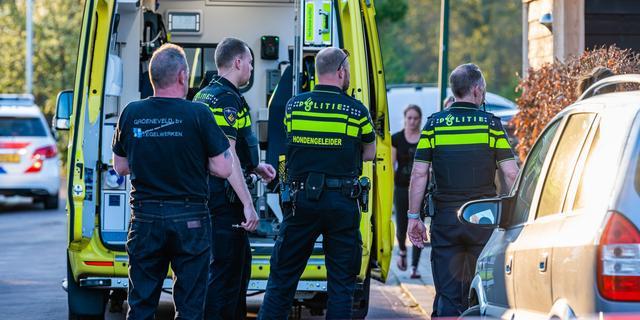Meisje (6) raakt zwaargewond door aanval rottweilers bij Kaatsheuvel