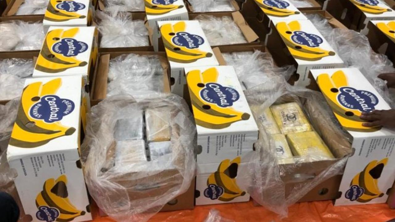 1,600 kilos of cocaine found among bananas in the port of Rotterdam