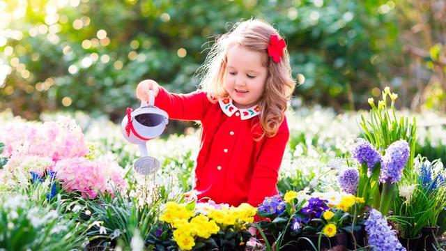 Inwoners Rucphen kunnen tuintegels ruilen voor planten
