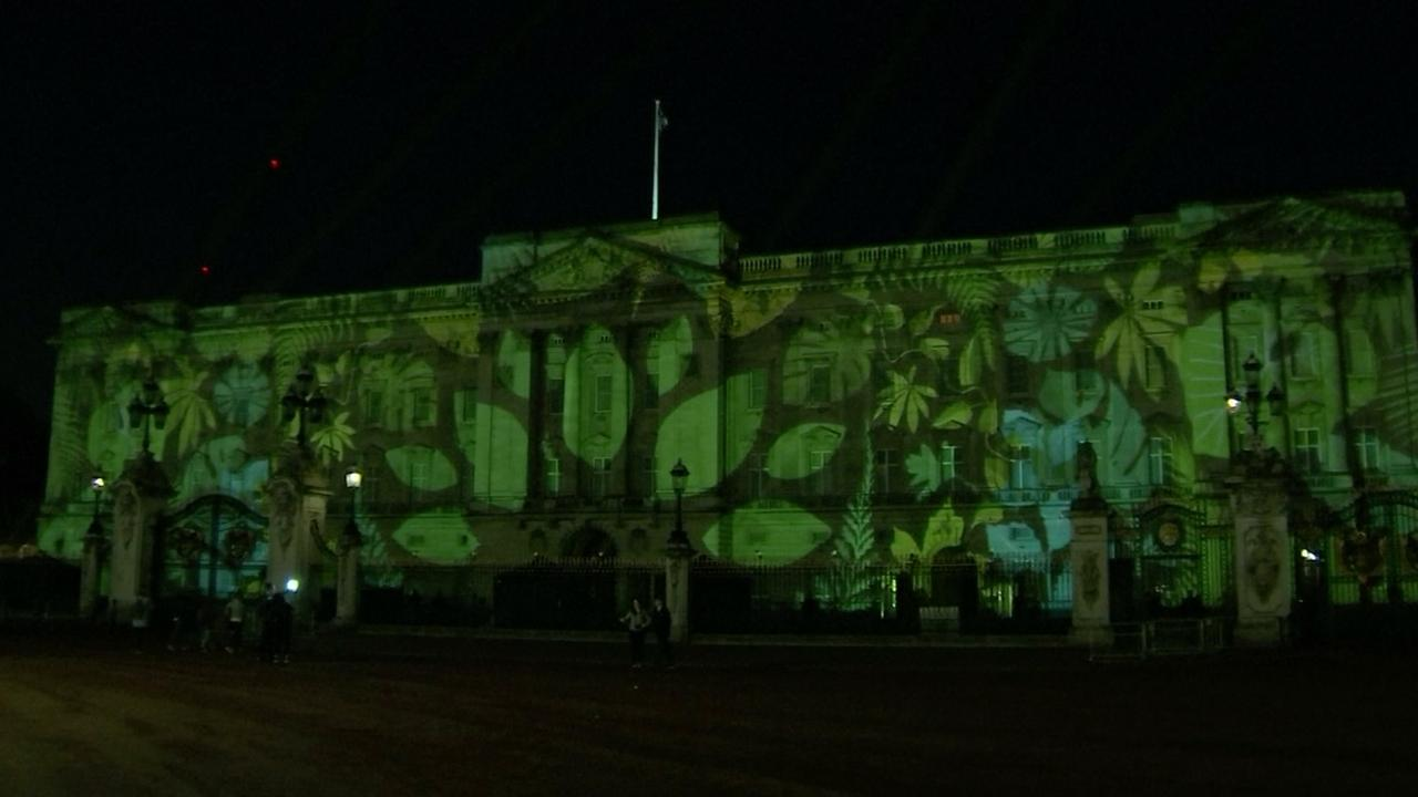 Buckingham Palace in regenwoud getransformeerd door projectie