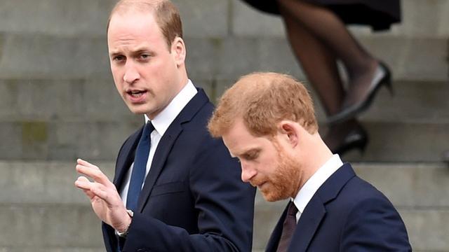 Prins Harry en prins William noemen artikel over vermeende ruzie onjuist