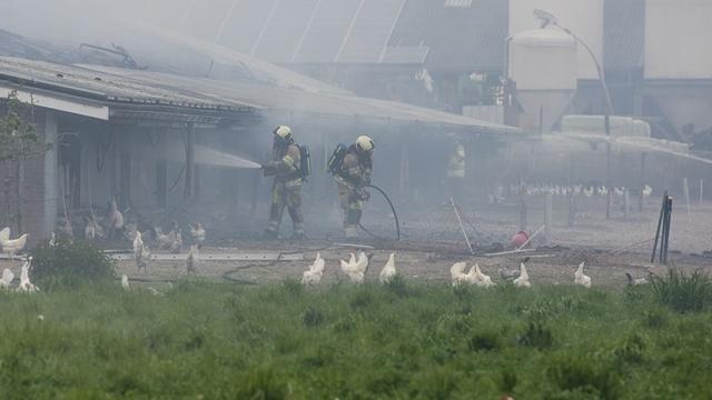 Duizenden kippen omgekomen na grote brand op boerderij Renswoude