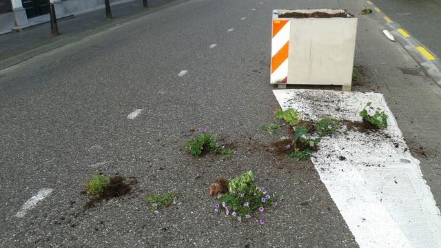 Nieuwe bloembakken Molenstraat mikpunt van vandalen