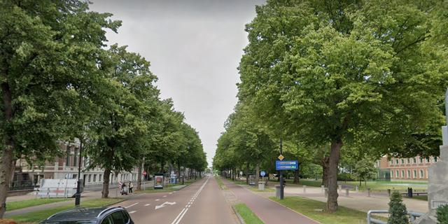 Omstreden beelden op Dreef in Haarlem blijven waarschijnlijk staan