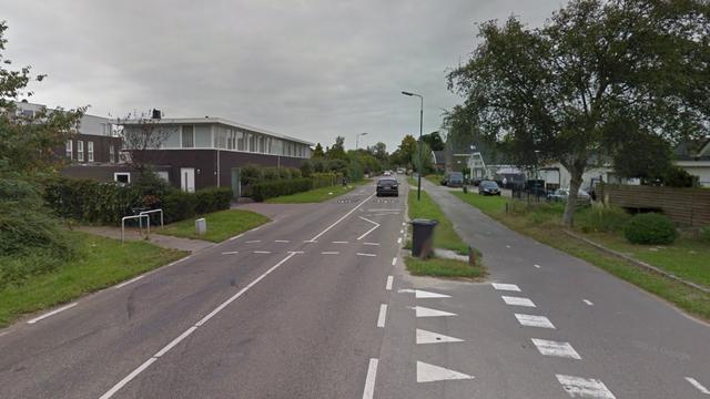 Wilhelminalaan in Leidsche Rijn gaat op de schop