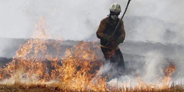Honderden mensen geëvacueerd wegens bosbrand in zuiden Spanje