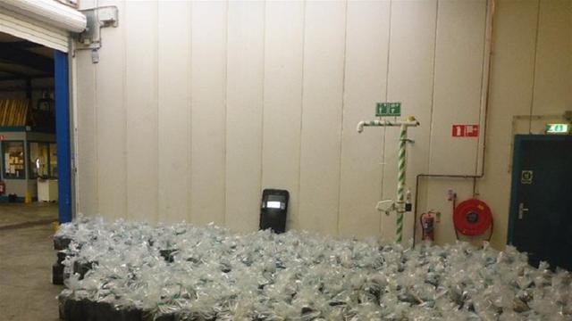 Zeven mannen aangehouden na vondst 2500 kilo hennep in haven Rotterdam