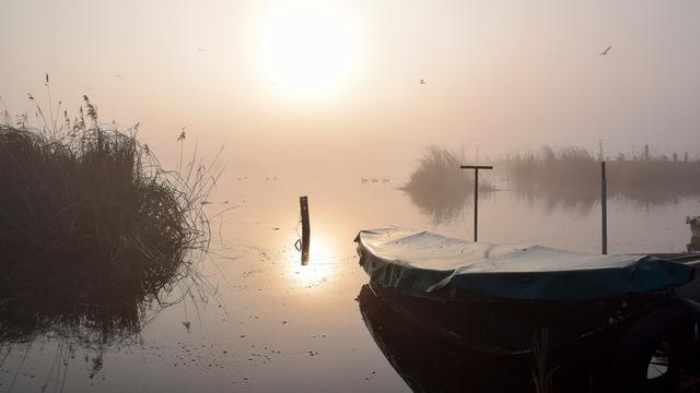 Weerbericht: Lokaal mist of onweer, de zon laat zich geregeld zien