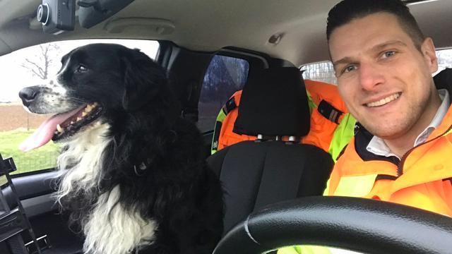 Sinds Oudejaarsavond vermiste hond teruggevonden op snelweg in Limburg