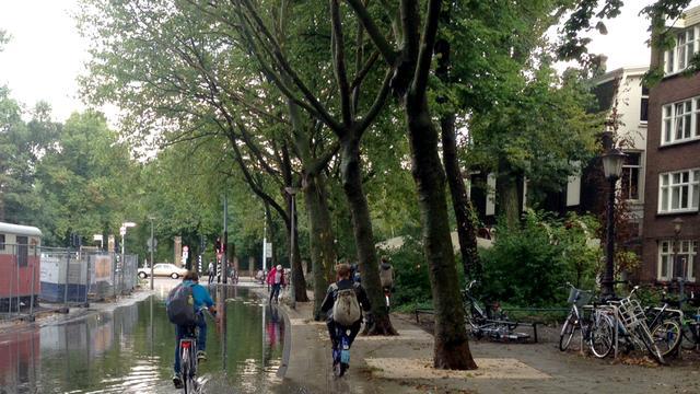 Buurtbewoners fel tegen weghalen iepen Amstelveenseweg