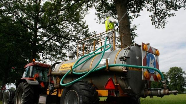 Provincie Noord-Brabant gaat eikenprocessierups te lijf