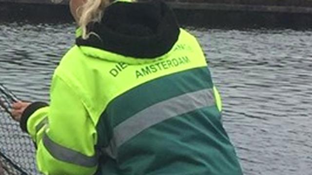 Vos gered met schepnet na val in Noordhollandsch Kanaal