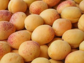 Eerder werden al abrikozenpitten van Superfoodz en Erica teruggehaald