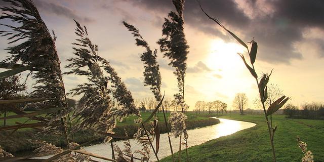 KNMI waarschuwt voor zware windstoten zondag