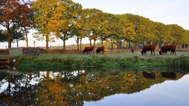 Natura-beheerplan voor wateren klaar