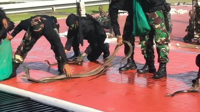 Leger Indonesië gebruikt slangen en vuur bij demonstratie minister VS