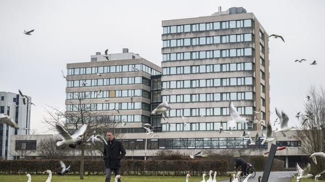 Mogelijk nieuwe woontorens aan Lomanlaan in Transwijk