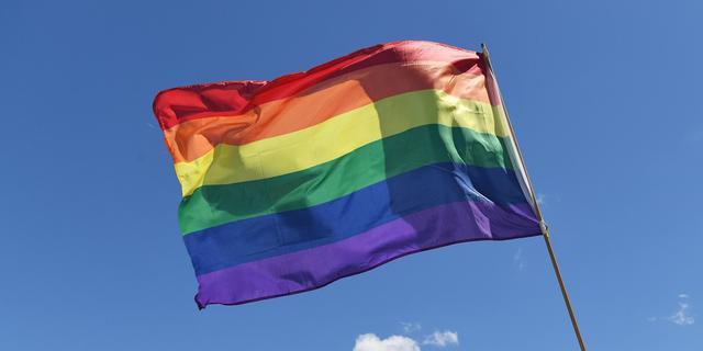Regenboogvlaggen bij Hofvijver uit protest tegen Hongaars antihomobeleid