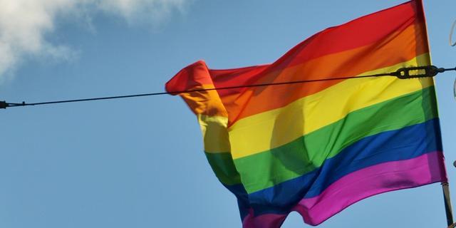 Regenboogvlag wappert in Bergen op Zoom