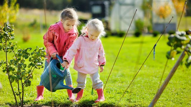 Tips om de tuin klaar te maken voor het voorjaar