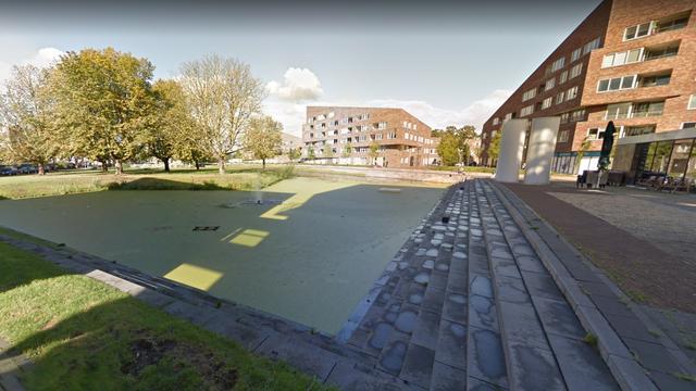 Gemeente Haarlem vermoedt uitbraak botulisme in vijver Marsmanplein