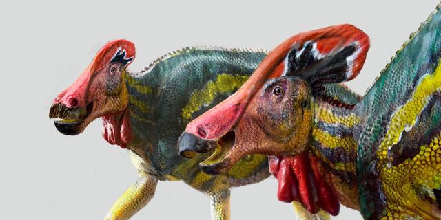 'Spraakzame' dinosaurus ontdekt aan de hand van in Mexico gevonden fossiel