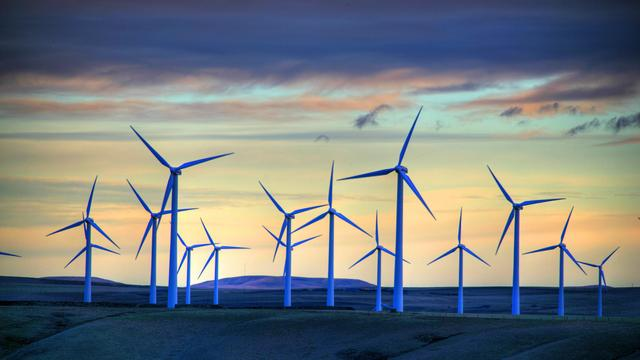 Nederland wekt de meeste duurzame energie op in maand januari
