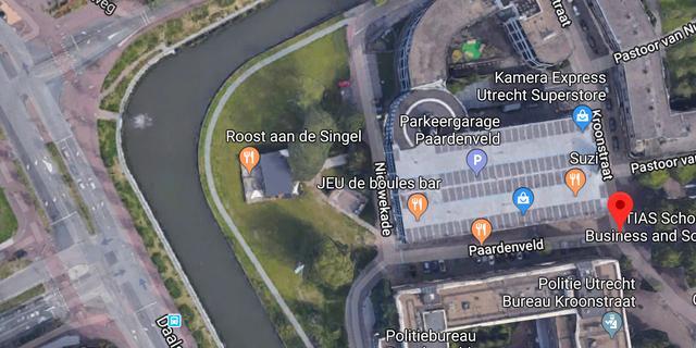 Politie arresteert ten minste drie mensen na overlast in park Paardenveld