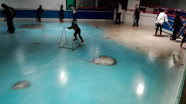 Japanse schaatsbaan met ingevroren vissen sluit na ophef