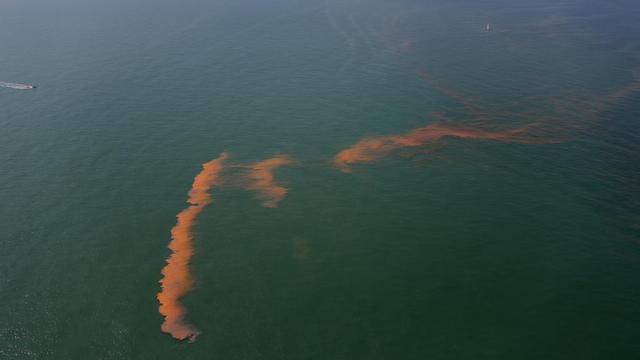 Zwemverbod na rode gloed aan kust Scheveningen en Wassenaar