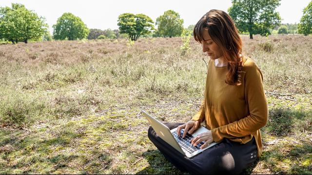 Aan deze banen voor digital nomads had je misschien nog niet gedacht