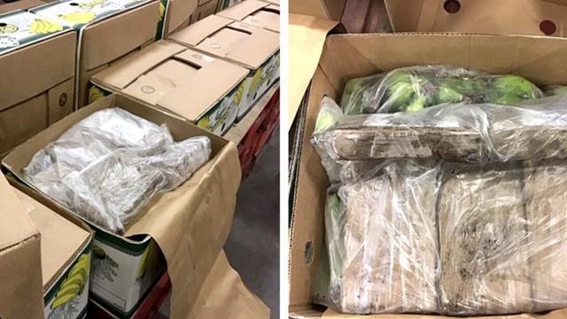 Douane onderschept 1.008 kilo cocaïne in haven van Vlissingen