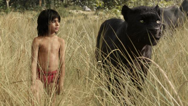 Geen Nederlandse versie van The Jungle Book in bioscopen