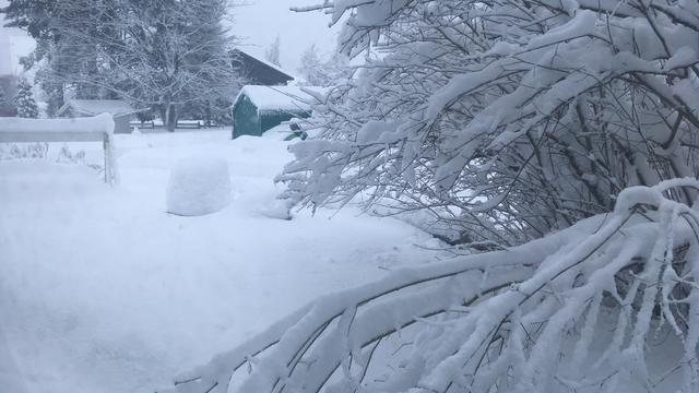 Zware sneeuwval legt leven in zuiden Noorwegen lam