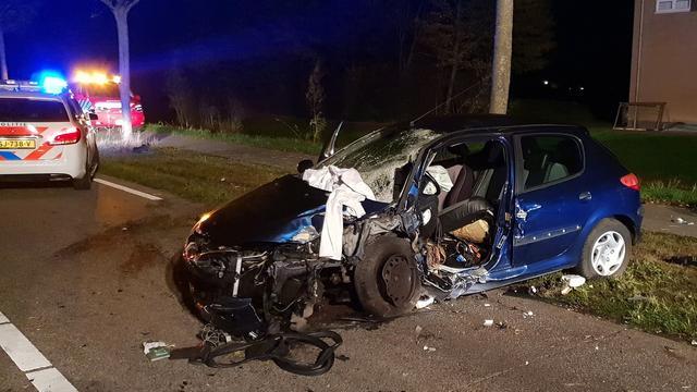 Automobilist (21) rijdt onder invloed van drugs tegen boom in Zevenbergen